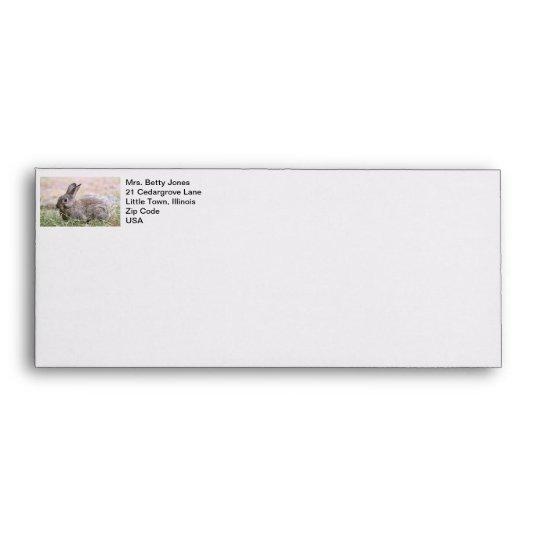 Rabbit Picture Envelope