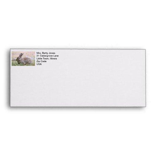 Rabbit Picture Envelopes