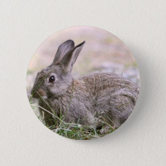 Rabbit Picture Pinback Button
