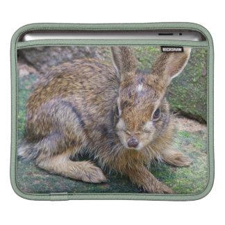 Rabbit Pictures iPad Sleeve