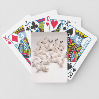 Rabbit Playing Cards