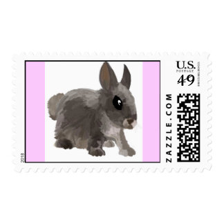 Rabbit Stamps