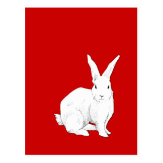 Rabbit red Postcard