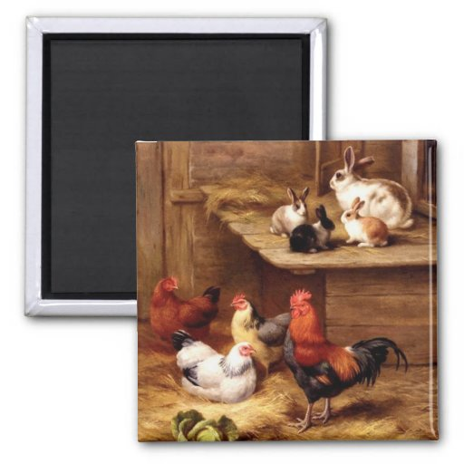 Rabbit rooster hens farm animals bunnies fridge magnet