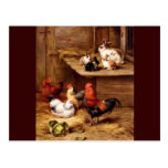 Rabbit rooster hens farm animals bunnies post card