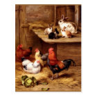 Rabbit rooster hens farm animals bunnies postcard