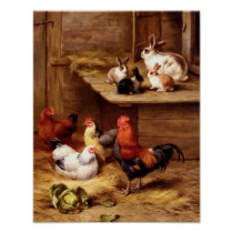 Rabbit rooster hens pets farm animals bunnies poster