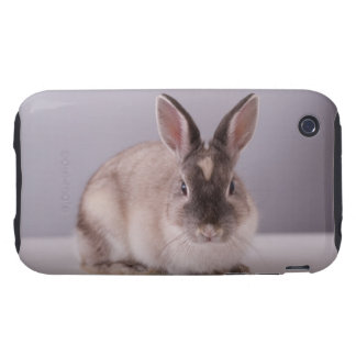 rabbit,simple background,animal,white table, tough iPhone 3 cases