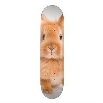 Rabbit Skateboard Deck