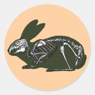 rabbit skeleton classic round sticker