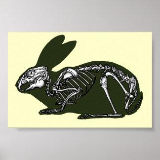 rabbit skeleton poster