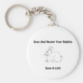 Rabbit Spay/Neuter Awareness Keychain