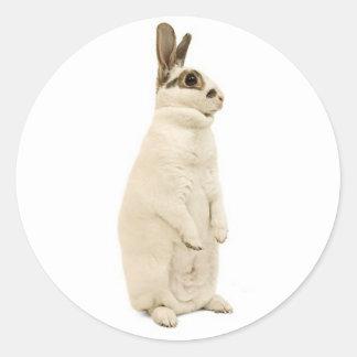 Rabbit Standing Sticker
