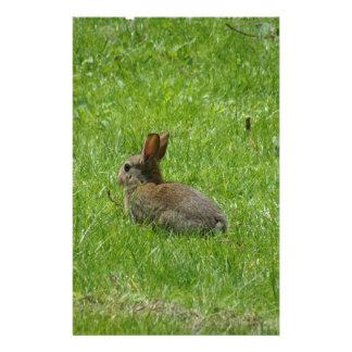Rabbit Stationery
