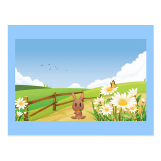 Rabbit Summer Blue Sky Nature Happy Flower Cute Postcard
