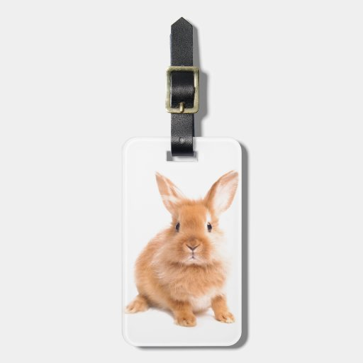 Rabbit Tag For Luggage