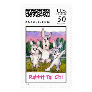Rabbit Tai Chi Cartoon Bunnies Custom Postage