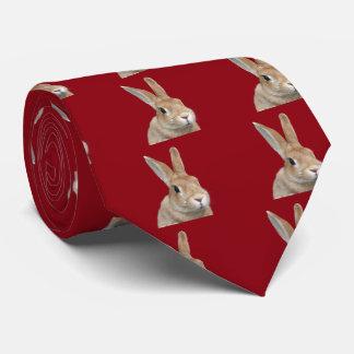 Rabbit Tie