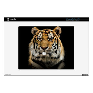 """Rabbit tiger - tiger face - tiger head decal for 12"""" laptop"""