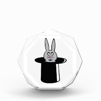 Rabbit Trick Acrylic Award