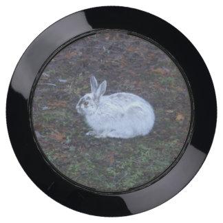 Rabbit USB Charging Station