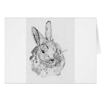 Rabbit Wild Card