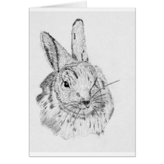 Rabbit Wild Greeting Cards