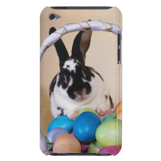 Rabbit with basket of eggs iPod touch cover