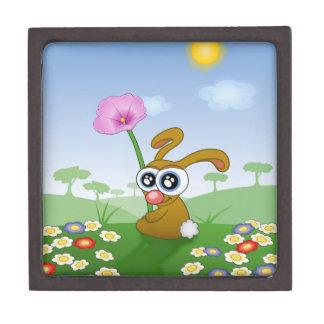 Rabbit with Big Eyes sitting on Field Gift Box