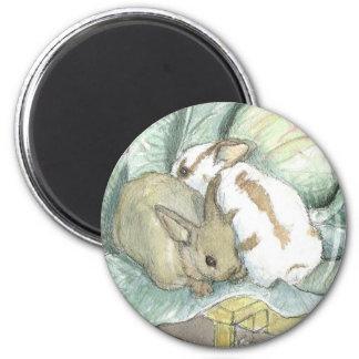 Rabbits and cabbage fridge magnet