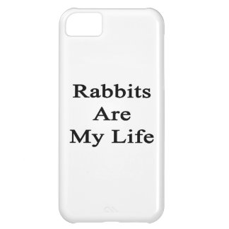 Rabbits Are My Life Cover For iPhone 5C