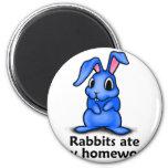 Rabbits ate my Homework Magnets
