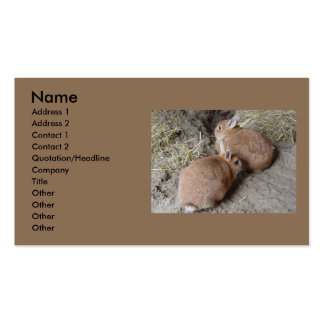 Rabbits Business Card