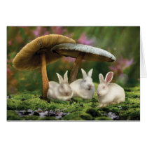 Rabbits in Wonderland (Rabbits & mushrooms card)