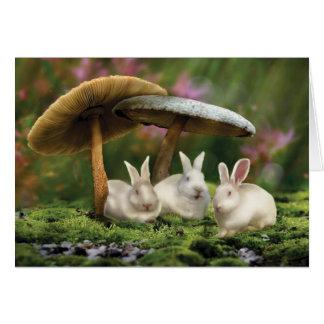 Rabbits in Wonderland (Rabbits & mushrooms card) Card