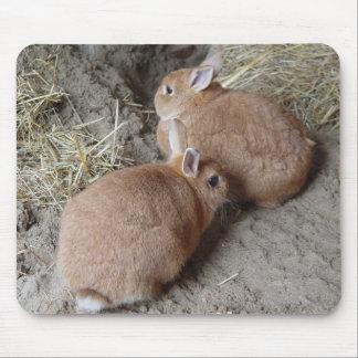 Rabbits Mouse Pad