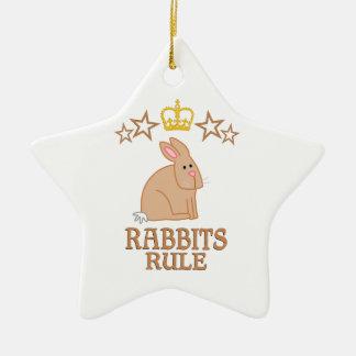 Rabbits Rule Ceramic Ornament