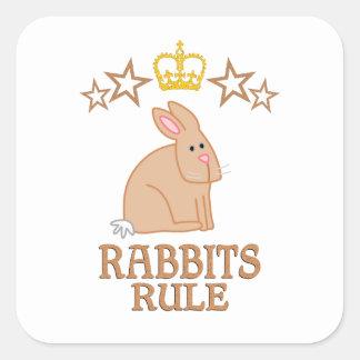 Rabbits Rule Square Sticker