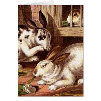 Rabbits Vintage Illustration Card