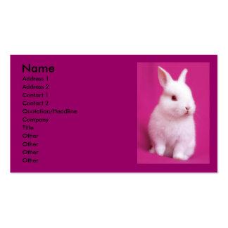 Rabbitt Business Card