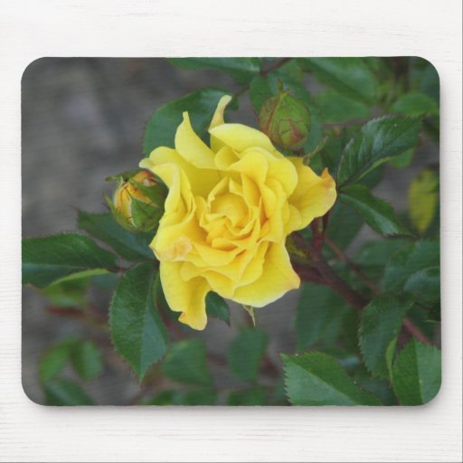 Rabble Rouser 056 Mouse Pad