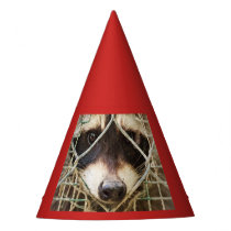 RACCON  PARTY HAT