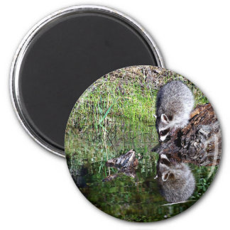 Raccon Reflection 2 Inch Round Magnet