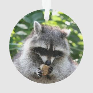 Raccoon 004 ornament