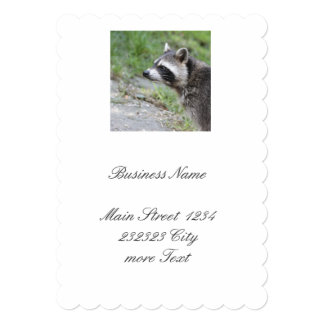 raccoon 1115 card