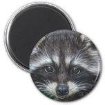 Raccoon #3 magnets