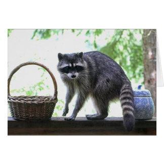 Raccoon and Cookie Jar Greeting Card