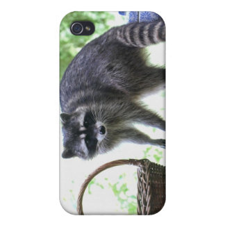 Raccoon and Cookie Jar iPhone 4/4S Cover