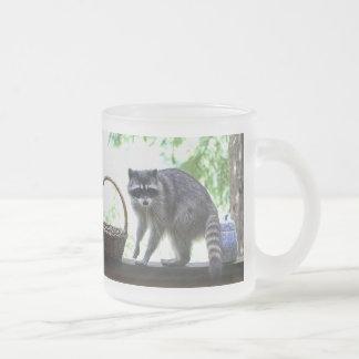 Raccoon and Cookie Jar 10 Oz Frosted Glass Coffee Mug