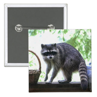 Raccoon and Cookie Jar Pinback Button